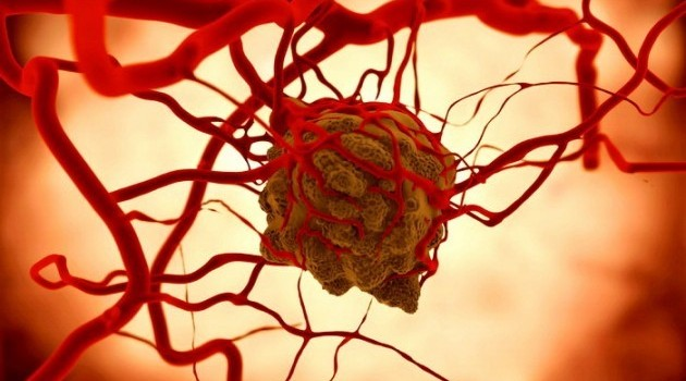 angiogenesis-e1452795935837-630x350